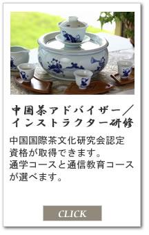 中国茶アドバイザー/インストラクター研修